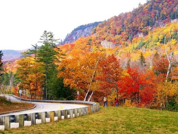 Fall Colors of Massachusetts
